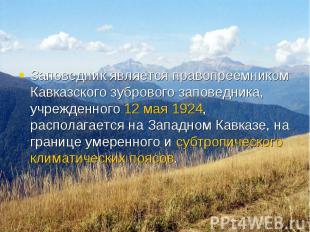 Заповедник является правопреемником Кавказского зубрового заповедника, учрежденн