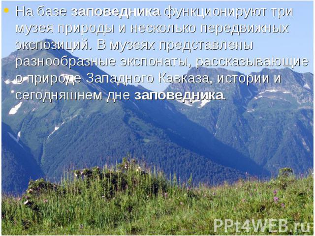 На базе заповедника функционируют три музея природы и несколько передвижных экспозиций. В музеях представлены разнообразные экспонаты, рассказывающие о природе Западного Кавказа, истории и сегодняшнем дне заповедника. На базе заповедника функциониру…
