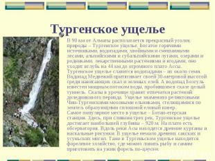 В 90 км от Алматы располагается прекрасный уголок природы – Тургенское ущелье. Б
