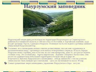 Наурзумский заповедник расположен на территории Наурзумского и Семиозерского рай