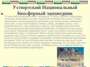 Устюртский заповедник имеет площадь в 70`000га, для него характерны типичные лан