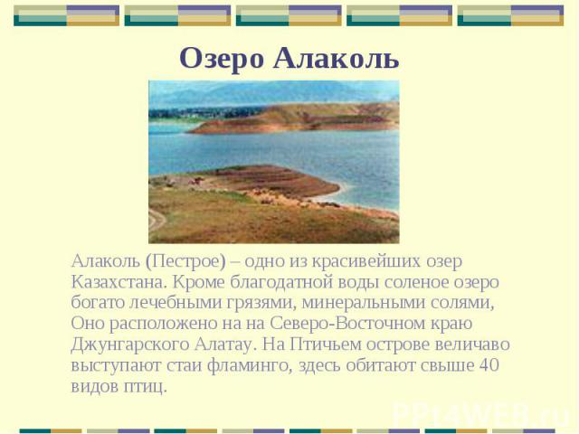 Алаколь (Пестрое) – одно из красивейших озер Казахстана. Кроме благодатной воды соленое озеро богато лечебными грязями, минеральными солями, Оно расположено на на Северо-Восточном краю Джунгарского Алатау. На Птичьем острове величаво выступают стаи …