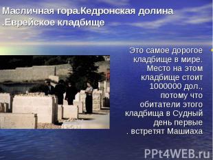 Это самое дорогое кладбище в мире. Место на этом кладбище стоит 1000000 дол., по