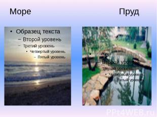 Море Пруд