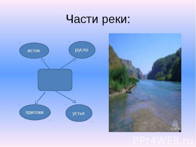 Части реки: