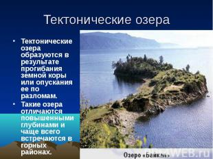 Тектонические озера Тектонические озера образуются в результате прогибания земно