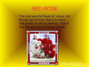 The rose was the flower of Venus, the Roman god of love. Red is a colour that st