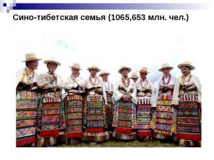 Сино-тибетская семья (1065,653 млн. чел.)