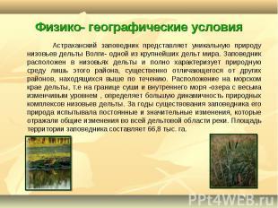 Астраханский заповедник представляет уникальную природу низовьев дельты Волги- о