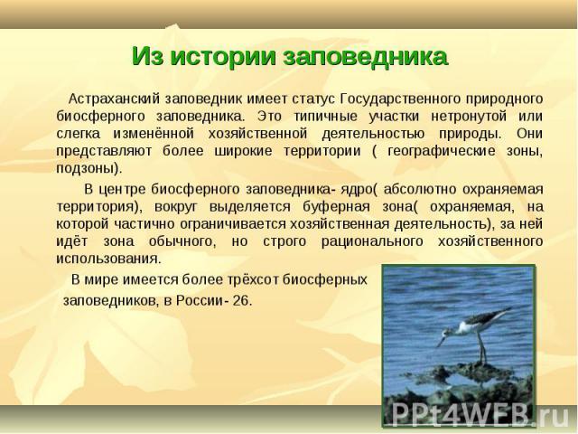 Астраханский заповедник имеет статус Государственного природного биосферного заповедника. Это типичные участки нетронутой или слегка изменённой хозяйственной деятельностью природы. Они представляют более широкие территории ( географические зоны, под…
