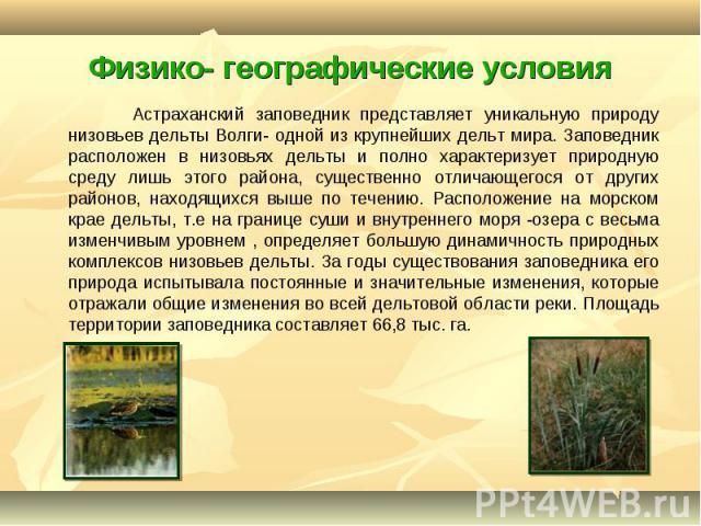 Астраханский заповедник представляет уникальную природу низовьев дельты Волги- одной из крупнейших дельт мира. Заповедник расположен в низовьях дельты и полно характеризует природную среду лишь этого района, существенно отличающегося от других район…