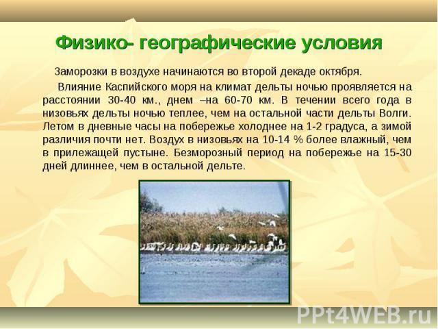 Заморозки в воздухе начинаются во второй декаде октября. Заморозки в воздухе начинаются во второй декаде октября. Влияние Каспийского моря на климат дельты ночью проявляется на расстоянии 30-40 км., днем –на 60-70 км. В течении всего года в низовьях…