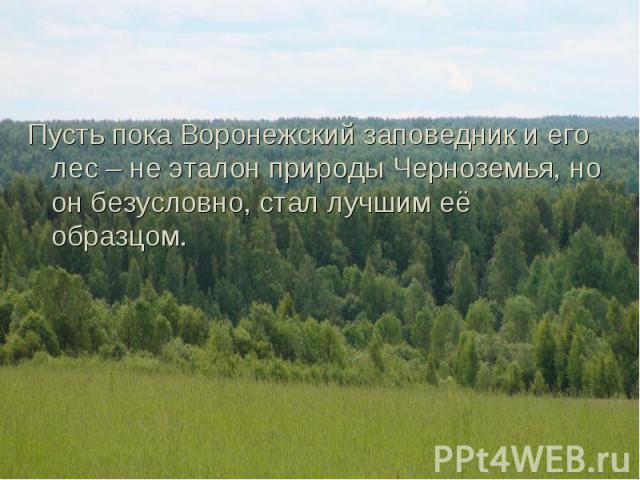 Пусть пока Воронежский заповедник и его лес – не эталон природы Черноземья, но он безусловно, стал лучшим её образцом. Пусть пока Воронежский заповедник и его лес – не эталон природы Черноземья, но он безусловно, стал лучшим её образцом.