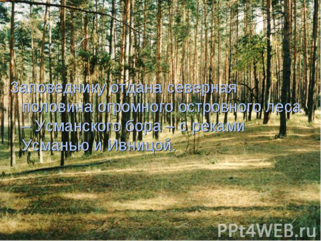Заповеднику отдана северная половина огромного островного леса – Усманского бора – с реками Усманью и Ивницой. Заповеднику отдана северная половина огромного островного леса – Усманского бора – с реками Усманью и Ивницой.