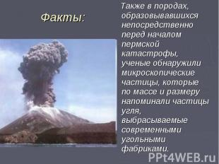 Также в породах, образовывавшихся непосредственно перед началом пермской катастр