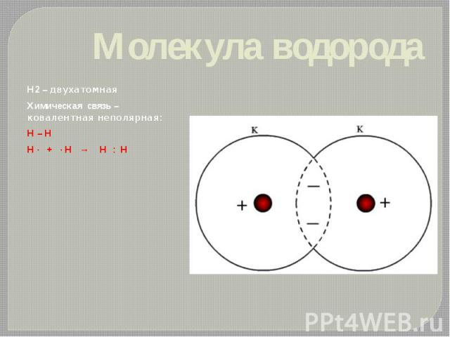 Молекула водорода Н2 – двухатомная Химическая связь – ковалентная неполярная: H – H H · + · H → H : H