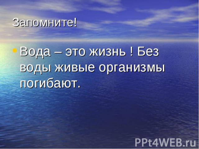Вода – это жизнь ! Без воды живые организмы погибают. Вода – это жизнь ! Без воды живые организмы погибают.