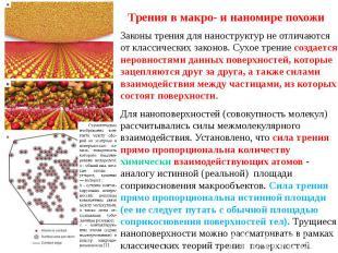 Трения в макро- и наномире похожи Законы трения для наноструктур не отличаются о