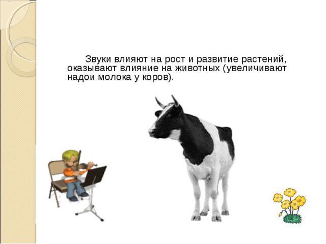 Звуки влияют на рост и развитие растений, оказывают влияние на животных (увеличивают надои молока у коров). Звуки влияют на рост и развитие растений, оказывают влияние на животных (увеличивают надои молока у коров).