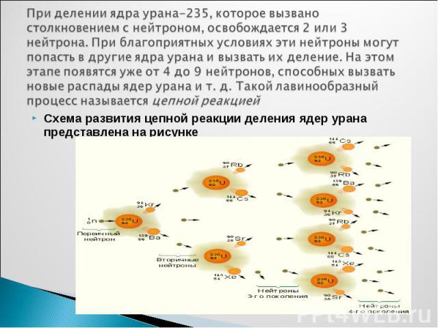 Схема развития цепной реакции деления ядер урана представлена на рисунке Схема развития цепной реакции деления ядер урана представлена на рисунке