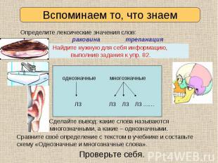 Раковина Трепанация Раковина Трепанация 1) 1) 2) 3) 4)