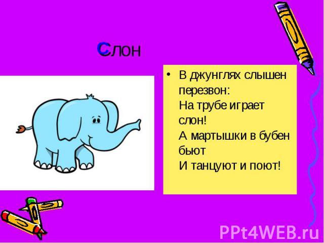 Слон В джунглях слышен перезвон: На трубе играет слон! А мартышки в бубен бьют И танцуют и поют!