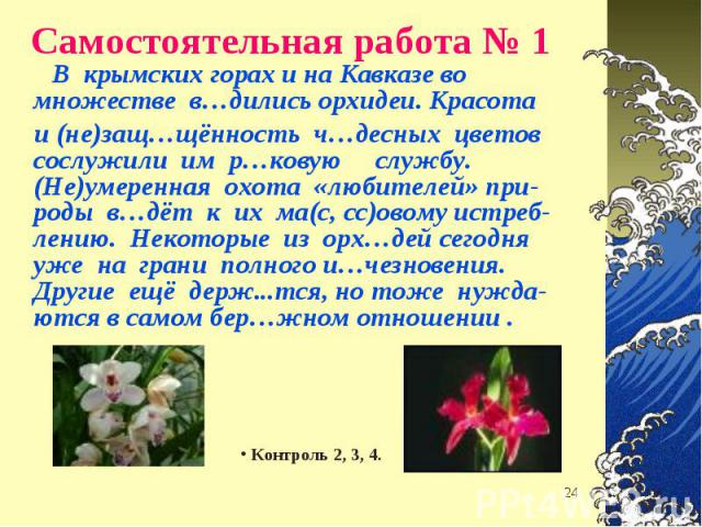 В крымских горах и на Кавказе во множестве в…дились орхидеи. Красота В крымских горах и на Кавказе во множестве в…дились орхидеи. Красота и (не)защ…щённость ч…десных цветов сослужили им р…ковую службу. (Не)умеренная охота «любителей» при- роды в…дёт…