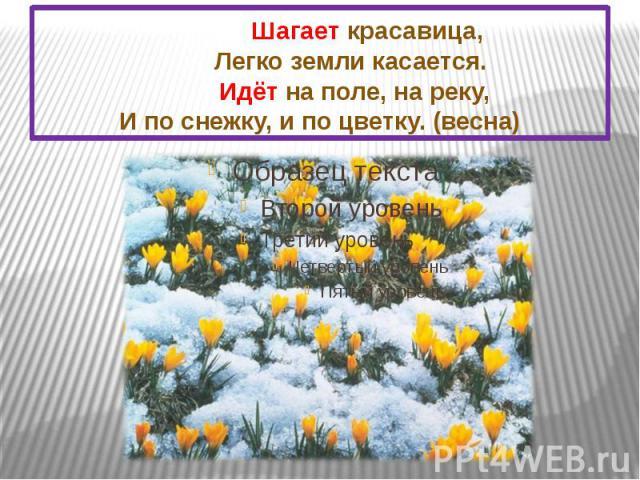 Шагает красавица, Легко земли касается. Идёт на поле, на реку, И по снежку, и по цветку. (весна)