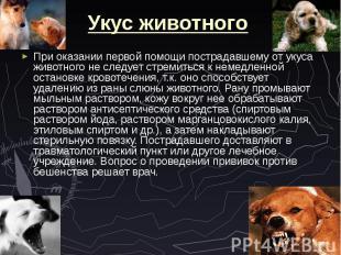 Укус животного При оказании первой помощи пострадавшему от укуса животного не сл