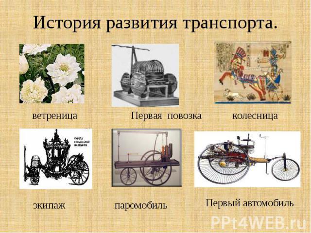 История развития транспорта. ветреница
