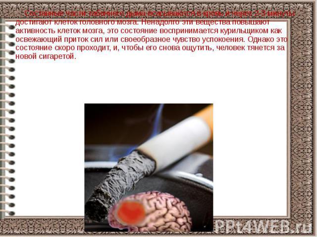 Составные части табачного дыма всасываются в кровь и через 2-3 минуты достигают клеток головного мозга. Ненадолго эти вещества повышают активность клеток мозга, это состояние воспринимается курильщиком как освежающий приток сил или своеобразное чувс…