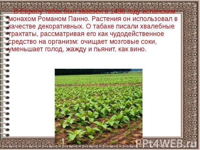 В Европу табак был завезён в 1496 году испанским монахом Романом Панно. Растения он использовал в качестве декоративных. О табаке писали хвалебные трактаты, рассматривая его как чудодейственное средство на организм: очищает мозговые соки, уменьшает …