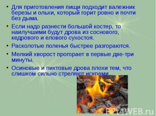 Для приготовления пищи подходит валежник березы и ольхи, который горит ровно и п