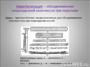 Шины – приспособления, предназначенные для обездвиживания участков тела при повр