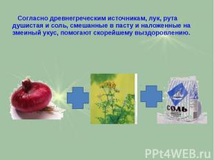Согласно древнегреческим источникам, лук, рута душистая и соль, смешанные в паст