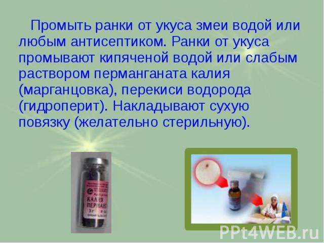Промыть ранки от укуса змеи водой или любым антисептиком. Ранки от укуса промывают кипяченой водой или слабым раствором перманганата калия (марганцовка), перекиси водорода (гидроперит). Накладывают сухую повязку (желательно стерильную). Промыть ранк…