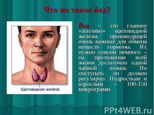 Йод – это главное «топливо» щитовидной железы, производящей очень важные для обм