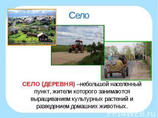 СЕЛО (ДЕРЕВНЯ) –небольшой населённый пункт, жители которого занимаются выращиван