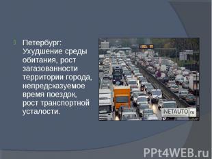 Петербург: Ухудшение среды обитания, рост загазованности территории города, непр