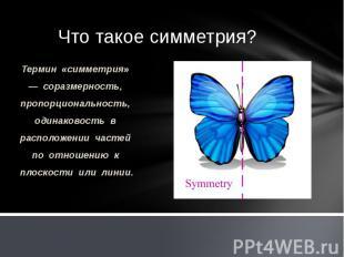 Термин «симметрия» — соразмерность, пропорциональность, одинаковость в расположе