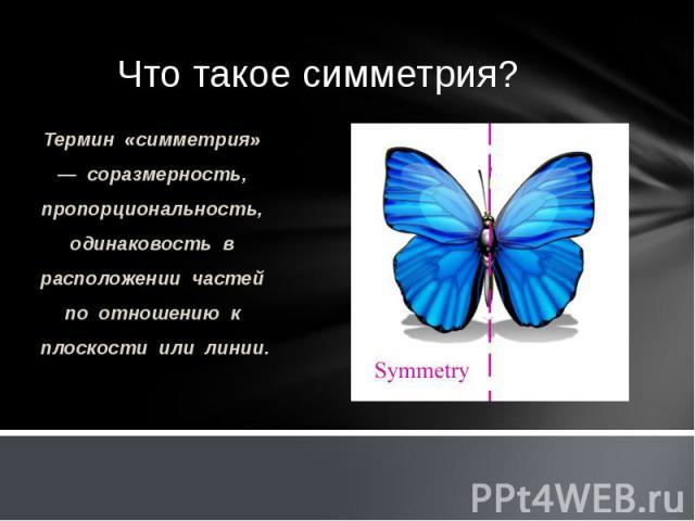 Термин «симметрия» — соразмерность, пропорциональность, одинаковость в расположении частей по отношению к плоскости или линии. Термин «симметрия» — соразмерность, пропорциональность, одинаковость в расположении частей по отношению к плоскости или линии.