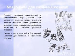 Материалы для создания мозаики Природа сотворила удивительный и разнообразный ми