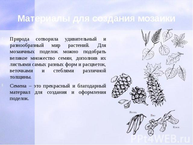 Материалы для создания мозаики Природа сотворила удивительный и разнообразный мир растений. Для мозаичных поделок можно подобрать великое множество семян, дополнив их листьями самых разных форм и расцветок, веточками и стеблями различной толщины. Се…