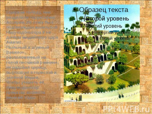 Одержав победу, они разделили территорию Ассирии. Их союз был подтвержден женитьбой Навуходоносора II на дочери мидийского царя Амитис. Одержав победу, они разделили территорию Ассирии. Их союз был подтвержден женитьбой Навуходоносора II на дочери м…