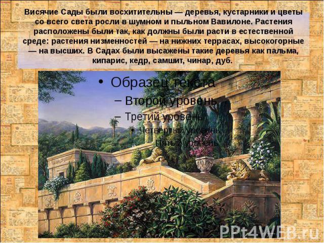 Висячие Сады были восхитительны — деревья, кустарники и цветы со всего света росли в шумном и пыльном Вавилоне. Растения расположены были так, как должны были расти в естественной среде: растения низменностей — на нижних террасах, высокогорные — на …