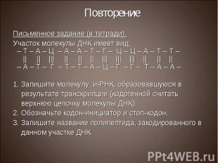 Письменное задание (в тетради): Письменное задание (в тетради): Участок молекулы
