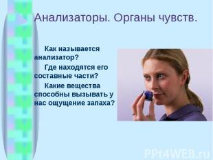 Анализаторы. Органы чувств. Как называется анализатор? Где находятся его составн