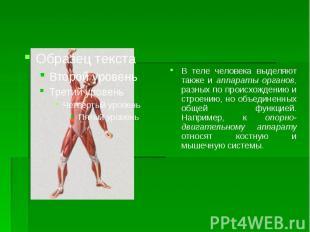 В теле человека выделяют также и аппараты органов, разных по происхождению и стр