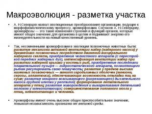 А. Н.Северцов назвал эволюционные преобразования организации, ведущие к морфофиз