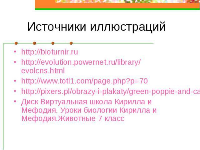 Источники иллюстраций http://bioturnir.ru http://evolution.powernet.ru/library/evolcns.html http://www.totl1.com/page.php?p=70 http://pixers.pl/obrazy-i-plakaty/green-poppie-and-cammomile-fields-10400188 Диск Виртуальная школа Кирилла и Мефодия. Уро…